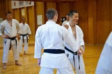 Семинар Т.Сасаки май 2015г