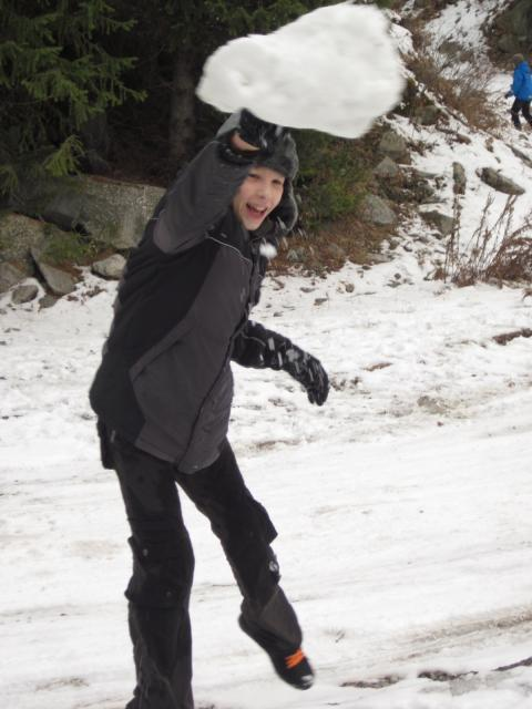 Снежок большого размера